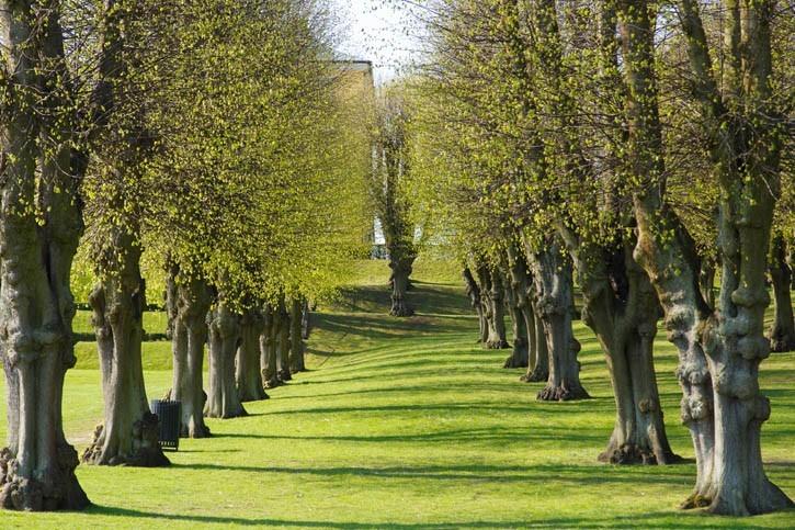 Promenade dans le Parc de Frederiksberg Have