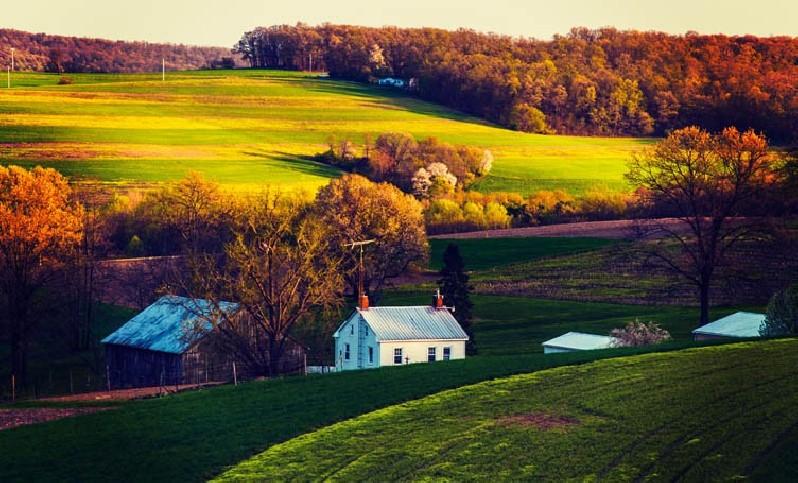Visite du Pays Amish
