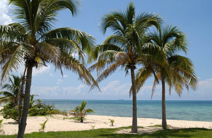 Visite de Grand Bahama