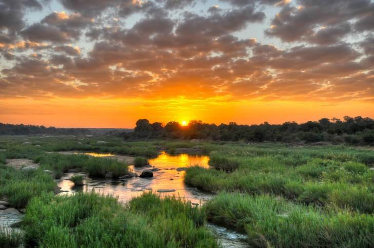 Visite du Parc Kruger