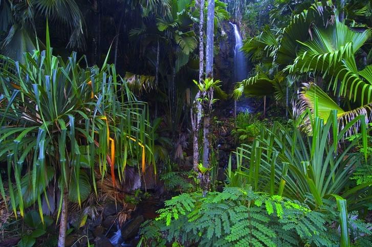 Visite Vallée de Mai