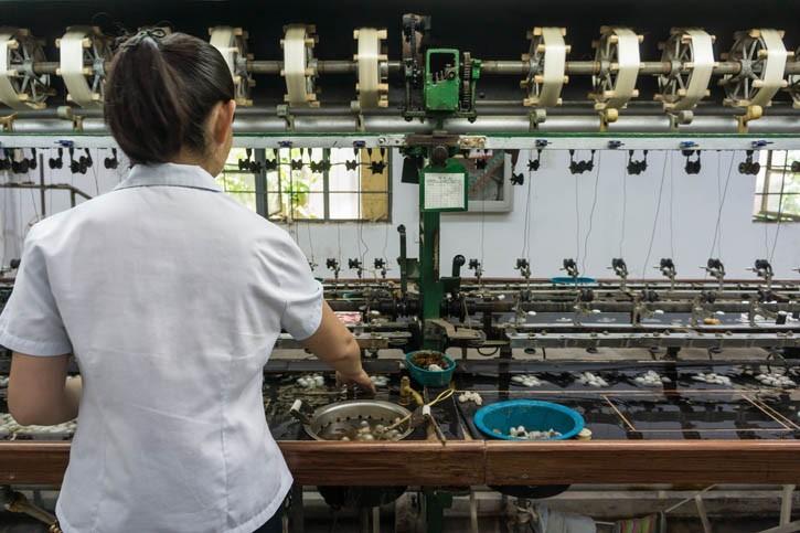 Visite d'une usine à soie