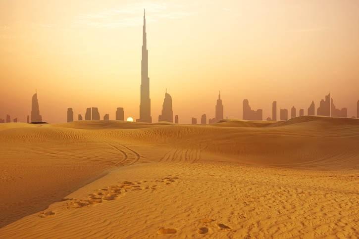 Escapade dans la réserve du désert de Dubaï