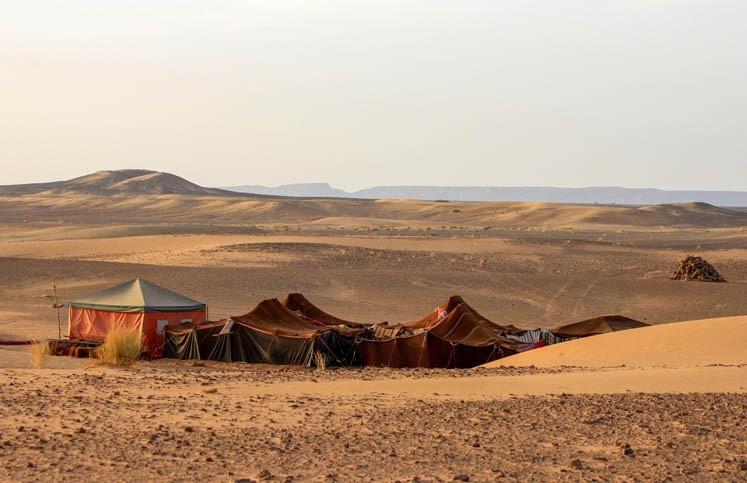 Déjeuner dans un camp bédouin