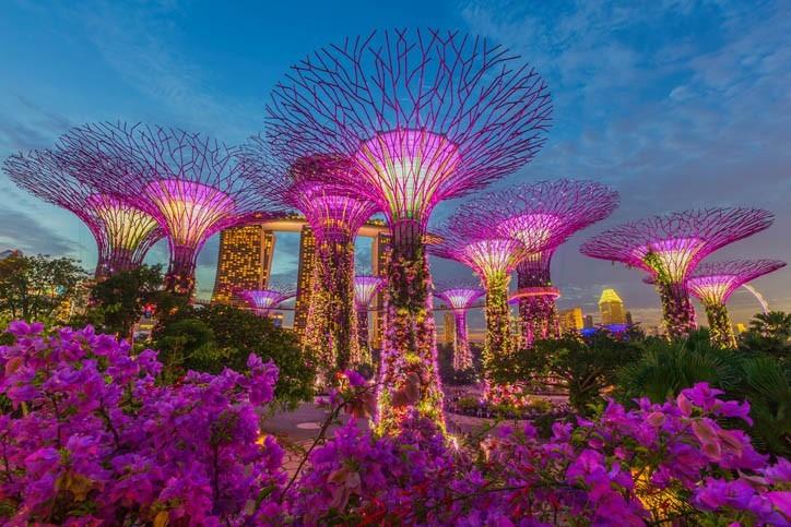 Visite du Jardin Extraordinaire de Singapour